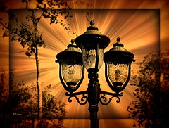 Lamps (MEaves) Tags: lights wroughtiron artsy lamps toned textured creativephotocafe