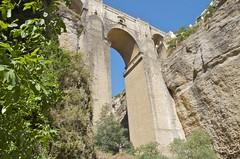 Vincent under the bridge
