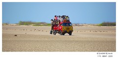 Travel to DhanushKodi