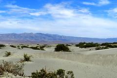 Dunas del Valle de la Muerte/Mesquite flat Sand Dunes-USA 09 (Rafael Gomez - http://micamara.es) Tags: california road park parque usa de death la sand flat dunes valle wells arena muerte national mesquite valley nacional dunas estados eeuu stovepipe unidos