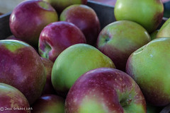 Apples (jessigr21675) Tags: autumn fruit canon apples buckscounty peddlersvillage harvestday buckscountyphotography
