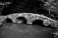 an arch bridge (yukkbie) Tags: bridge blackandwhite reflection japan nikon noiretblanc nikkor kanazawa