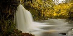 Upper Ddwli Falls, Sgwd Ddwli Uchaf (Izzy Standbridge) Tags: longexposure autumn fall waterfall le pontneddfechan upperddwlifalls sgwdddwliuchaf