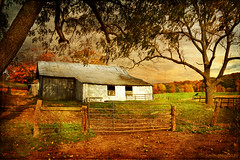 Burke's Garden Barn (keeva999) Tags: autumn texture abandoned rural virginia nikon country barns d3200 memoriesbook distressedjewell skeletalmess