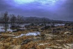 Potomac Rocky Shore
