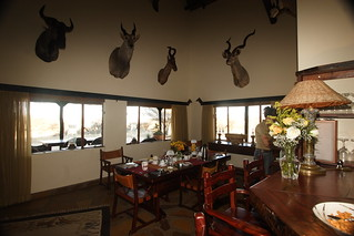 Namibia Safari - Lake Lodge 9