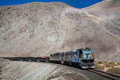 Pretty in blue... (arcadia1969) Tags: chile trains ten railways ferronor portrorillos