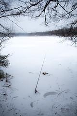 Forgotten Fishing rod (maaniemi) Tags: canon 5d markiii iii mark mkiii mk3 3 mark3 tero maaniemi jyväskylä winter 2014 talvi 2470 28l ii usm ef 24 70 28