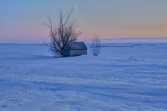 Cold Blue Hours (John Andersen (JPAndersen images)) Tags: winter sunset snow open empty alberta pastels bluehour prairie spaces granary wheatland beisiker