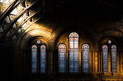 This silent light (mendhak) Tags: autumn light wallpaper london museum nhm shaft mendhakwallpaper