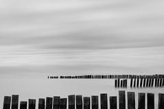 Giles Quay 1 (annemcgr) Tags: longexposure ireland sea seascape water monochrome clouds blackwhite le louth fineartphotography gilesquay alwaysexcellent annemcgrath