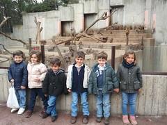 orvalle-infantil-zoo8 (1)