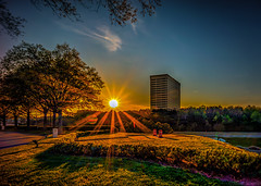 StuartSchaefer_LateEveningSettingSun (Stuart Schaefer Photography) Tags: trees atlanta sunset sky buildings georgia landscape evening sunburst