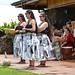 Kipaepae for Te Waka Huia