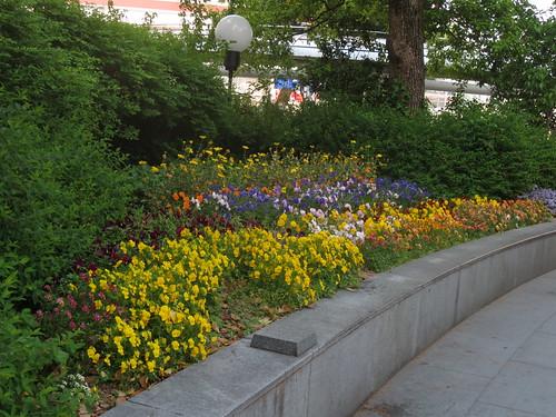 駅前の花壇