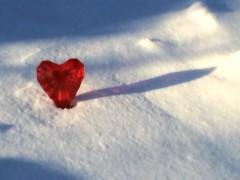 sheen shadow (saudades1000) Tags: winter snow love heart amor valentine romance romantic sheen neruda amore lightandshadow valentinesday buriedheart lovesonnet redsheen sheenshadow