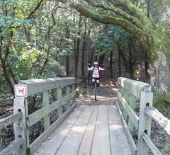Michelle at the bridge
