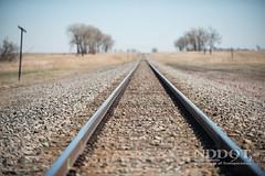 Anglų lietuvių žodynas. Žodis railroad track reiškia geležinkelio bėgių lietuviškai.