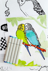 OMG Budgies!!! (Calzephyr) Tags: pet pets birds book crafts budgie parakeet coloring colouring parakeets budgies printables