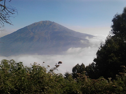 "Pengembaraan Sakuntala ank 26 Merbabu & Merapi 2014 • <a style=""font-size:0.8em;"" href=""http://www.flickr.com/photos/24767572@N00/26888490890/"" target=""_blank"">View on Flickr</a>"