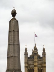 Moral High Ground (Douguerreotype) Tags: city uk england urban bird london tower westminster architecture buildings britain flag parliament gb british