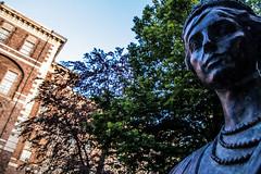 IMG_0645 (cinzia.virgilio) Tags: castello statua viso rivoli prospettiva nationalgeographicartstatuerivoliitalyphoto
