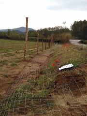 """Preparant el pati per estocar fusta i biomassa <a style=""""margin-left:10px; font-size:0.8em;"""" href=""""http://www.flickr.com/photos/134196373@N08/27071798080/"""" target=""""_blank"""">@flickr</a>"""