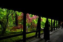 Corridor (tez-guitar) Tags: summer green japan temple japanese kyoto pentax sigma architect pentaxart