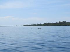"Bahia de los Dolfines <a style=""margin-left:10px; font-size:0.8em;"" href=""http://www.flickr.com/photos/127723101@N04/27300047326/"" target=""_blank"">@flickr</a>"