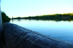 Evening to enjoy (Nathalie_Dsire) Tags: wood blue summer lake macro evening stuttgart mark summerevening maxeythsee