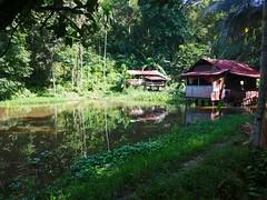 Bukit Lawang house on water (Lincoln Frank Allen) Tags: bukit lawang house water stilts indonesia