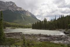 Athabasca River feeding falls (David Minty) Tags: river waterfall landform