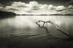 Serenity. (pnkfd) Tags: tree nature water glass clouds landscape smooth silky welder nd1000