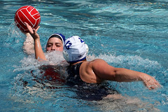 AW3Z0259_R.Varadi_R.Varadi (Robi33) Tags: summer sports water swimming ball fight women action basel swimmingpool watersports waterpolo sportspool waterpolochampionship