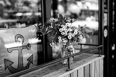 Summer flowers-1001492 (Gene Trent) Tags: flowers summer storefront windowsill