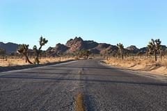 Desert Road (Sam Howzit) Tags: california road nationalpark desert joshuatree joshuatreenationalpark parkboulevard