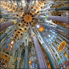(2322) La Sagrada Famlia (Fisheye world) (QuimG) Tags: barcelona art church architecture arquitectura interior fisheye panasonic catalunya specialtouch quimg quimgranell joaquimgranell afcastell obresdart lasagradafamliadebarcelona
