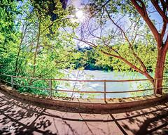 intimation I (Ukelens) Tags: longexposure sunset summer sun water schweiz switzerland stream wasser sonnenuntergang suisse swiss sommer bern svizzera fluss sonne wald sunbeam sonnenstrahl sonnenschein langzeitbelichtung sunstream wlder berncity ukelens