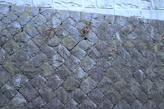 Nobi 160604 #3 (Taro Jimkisbea) Tags: street stone wall yokosuka oldnew nobi stonemasonry leicax1