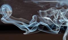 (Seabird NZ) Tags: newzealand christchurch sunlight reflections smoke canterbury forms ghosts backlit incense weirdshapes sigma120300mmf28 nikond810a