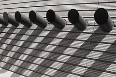 Bears Repeating (skipmoore) Tags: sanfrancisco shadows moma museumofmodernart