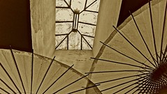 Skylight and Parasols ... (sswj) Tags: leica monochrome northerncalifornia sepia composition architecturaldetail availablelight skylight naturallight parasol scottjohnson abstractreality dl4 sangregoriostore