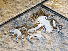 Rain.. (* Snowflakes *) Tags: rain pioggia pozzanghera puddle pavimento dettaglio deatiled detail floor water dropsofwater