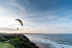 M1140414.jpg (meerecinaus) Tags: longreef beach collaroy newsouthwales australia au