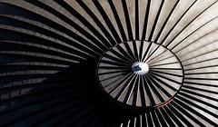 Lines (orothy) Tags: cityhall australia brisbane dome qld queensland
