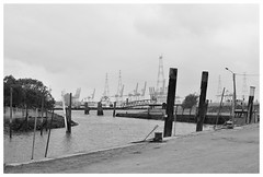 ANTWERP HARBOUR FROM LILLO FORT (Spaceopera) Tags: white haven black monochrome port harbor belgium belgique belgie harbour schelde antwerpen lillo anvers scaldis flandre escaut vlanderen
