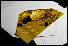 Thank you ~ Day 263/365 (ODC - Yellow) (SeptemberRayne) Tags: friends flower yellow cards design flickr pretty you best note thank card envelope peeking envelopes yellowish