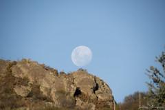 Full Moon at Sunset (..Javier Parigini) Tags: sunset naturaleza moon nature argentina atardecer nikon sigma luna full cordoba d800 llena tanti 150500 javierparigini reservacerroblanco