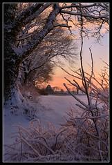 Winter Sunset at Boenningstedt (Gelegenheitsknipser) Tags: schnee winter sunset snow creek germany deutschland dawn evening abend weide europa europe sonnenuntergang dorf village au wiese 2006 bach pi dmmerung sh landschaft schleswigholstein pinneberg graben norddeutschland northerngermany wasserlauf daemmerung kreispinneberg gelegenheitsknipser bnningstedt boenningstedt mpfotonet gelegenheitsknipserde marcopagel