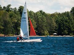 Sailing (andyscamera) Tags: ontario canada sailboat boats catamaran dart18 andyscamera lakekennisis haliburtoncounty